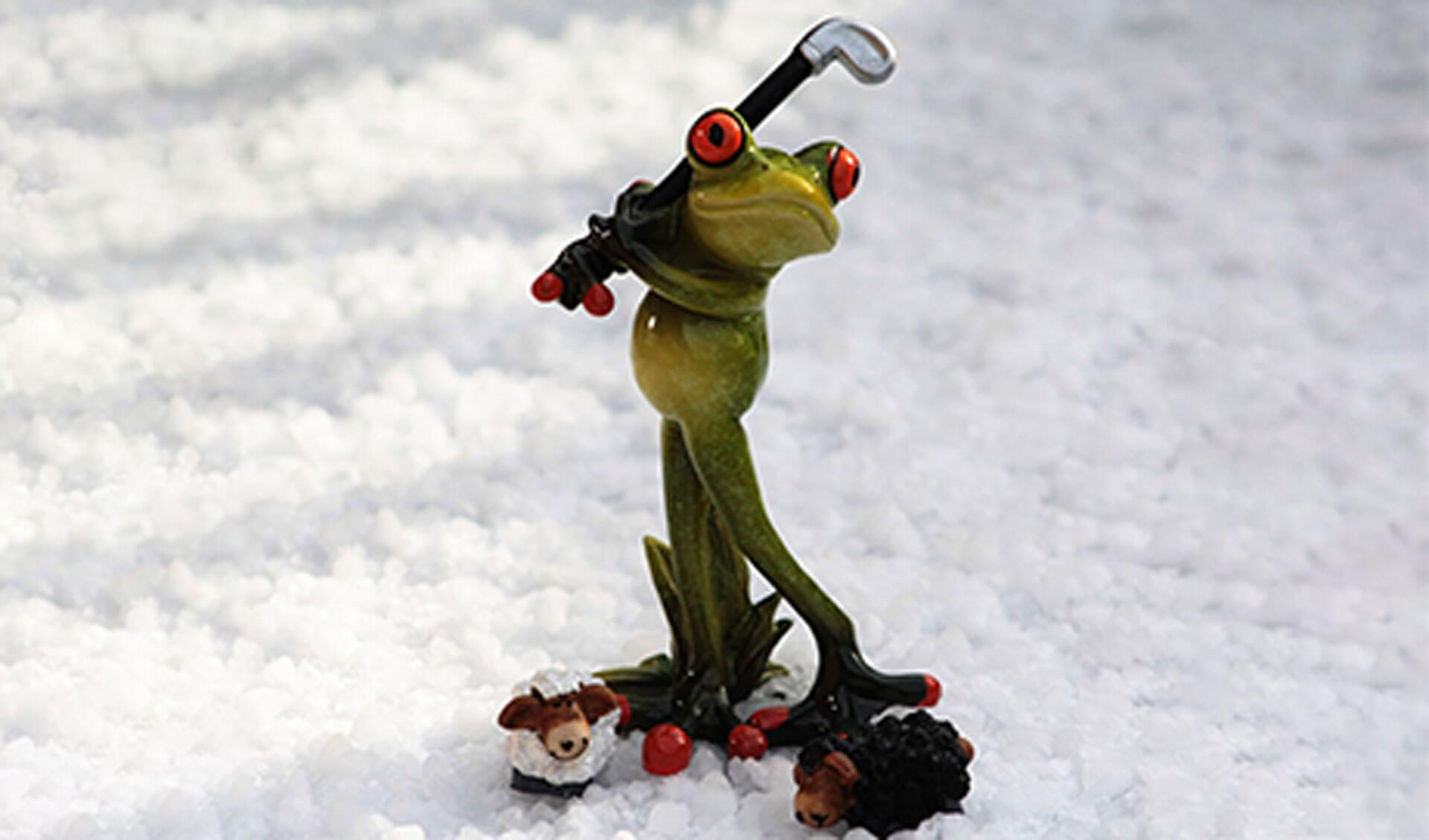 golfing-frog-snow